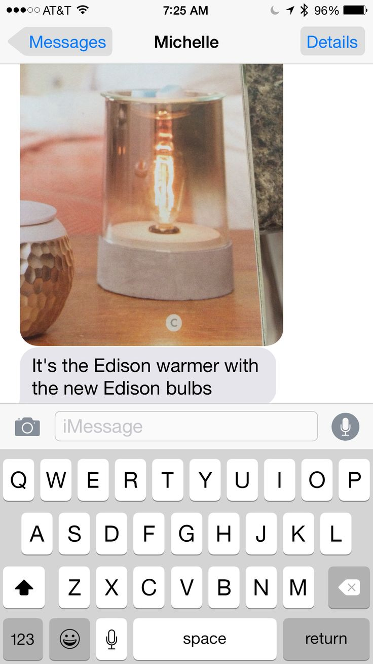 One of the new Scentsy burners (daughter-in-law) sells Scentsy!