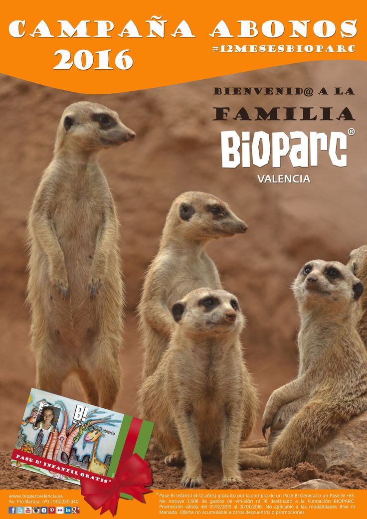 CAMPAÑA ABONOS 2016: ¡Bienvenid@ a la familia Bioparc Valencia! Pase Infantil (4-12 años) gratuito por la compra de un Pase General o +65. Vive #12mesesBioparc.  Promoción válida online y en las taquillas del parque hasta el 31 de enero. + info http://www.bioparcvalencia.es/entradas/promociones/  Consulta todas las modalidades de Pase anual B! http://www.bioparcvalencia.es/pase-anual-b/modalidades/ y disfruta naturaleza salvaje durante todo el año