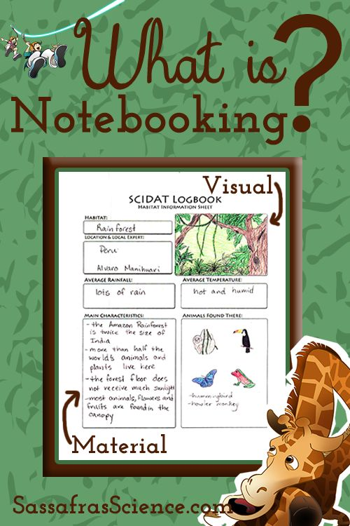 What is Notebooking? | Sassafras Science
