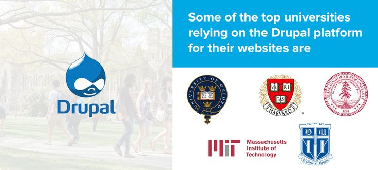 Why Universities like Harvard and MIT are still relying on Drupal Web Solutions