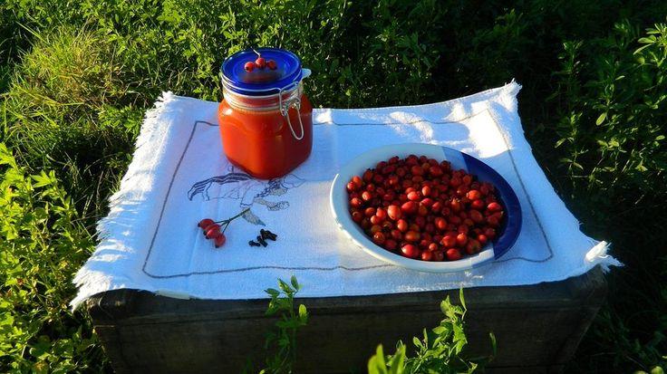 Šípková marmeláda, dobré rady jak ji udělat + recepty na čaje z šípku
