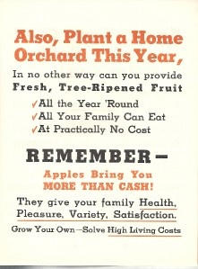 Vintage Stark Brothers Brochure Purchase Production of Trees c. 1930s