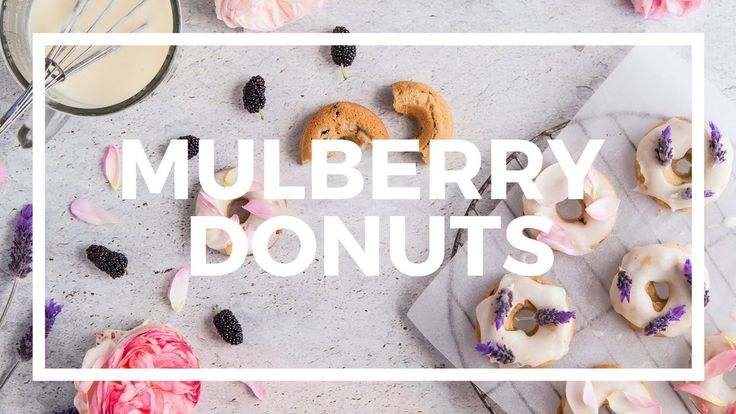 Spring Time Adventures & Mulberry Donuts