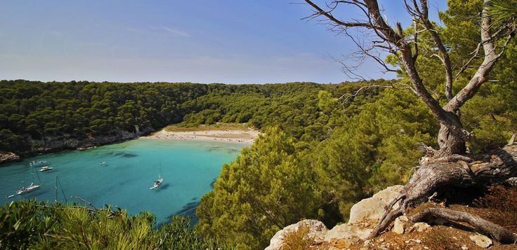 https://flic.kr/p/yikoZ9 | Cala Trebalúger, Menorca | Cala Trebalúger is one of the most beautiful beaches in Menorca. It is surrounded by pines and has a small river at one side. Its relatively difficult access makes that it is not too crowded, even during peek days in summer. The most convenient way to reach the beach by foot is from Cala Mitjana, which is approximately 30min away. However, the parking just behind Cala Mitjana has been recently closed (summer 2015), so additional 20-30min…