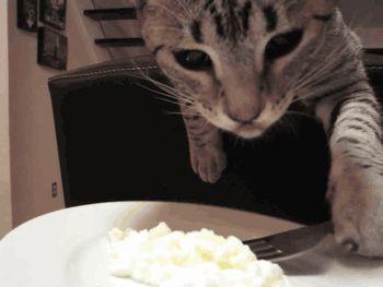 Found on brokencinema.tumblr.com via Tumblr