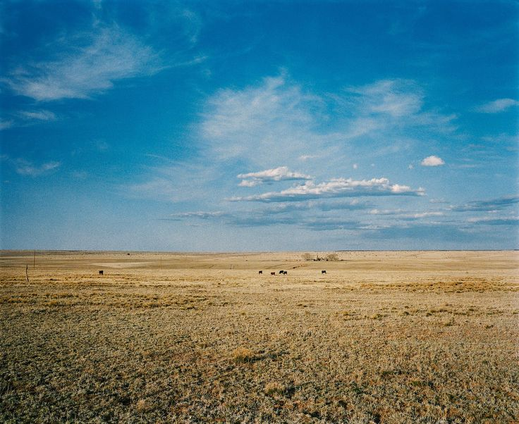 wim wenders photography landscape near Santa Fe New Mexico