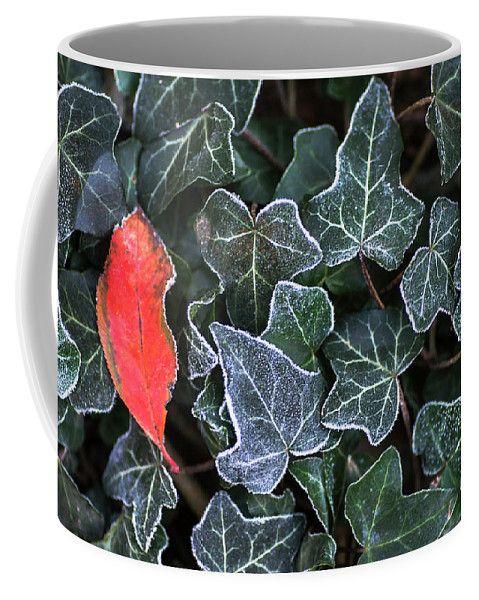 Frosty Freshness By Irirna Safonova Coffee Mug featuring the photograph Frosty Freshness by Irina Safonova #IrinaSafonovaFineArtPhotography #food #Rustic #ArtForHome