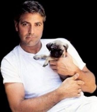 Who knew George Clooney had a pug? We approve! (Click through the link to see 13 other celebs with pugs!)