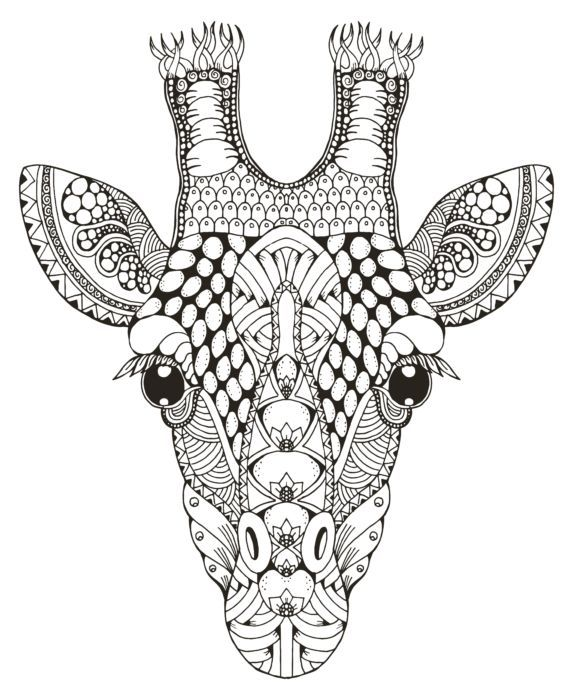 A Giraffe Head Coloring Picture With Intricate Detail