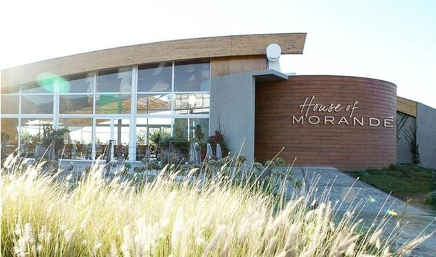 House of Morandé, Casablanca, Chile, Restaurants