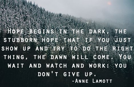 #annelamottseries  #peersupport #depression #recovery