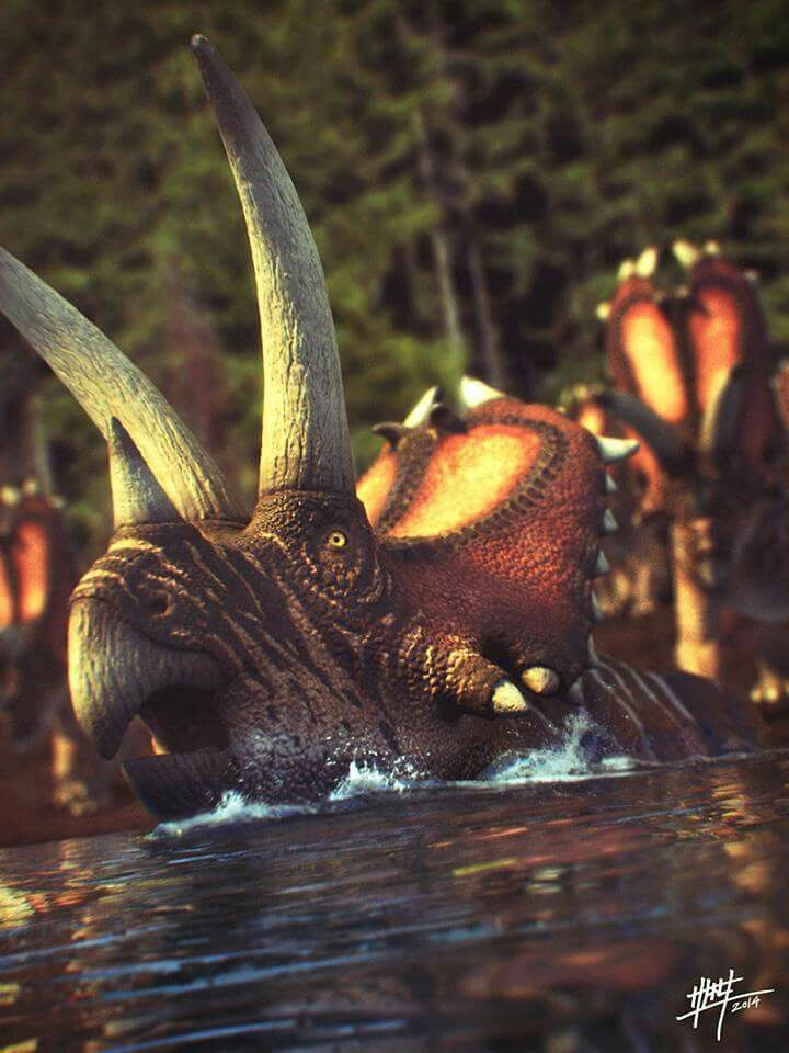 Triceratops Crossing A River
