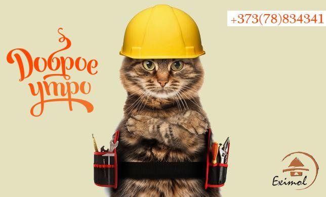 Вот и наступили выходные, пора отдыхать. Всех с добрым утром и хорошего дня! --  Bună dimineața și o zi bună! Este timpul să se relaxeze. -- #cat #week #endofwork #lemn #like #follow #srubmd #eximol #relax #howwedo #catbuilder #goodday #morning #builder