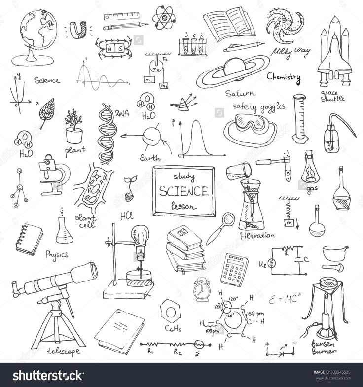 Freehand drawing school items, Back to School Science theme, Hand drawing set of school supplies sketchy doodles vector illustration, doodles, science, physics, calculus, chemistry, biology, astronomy