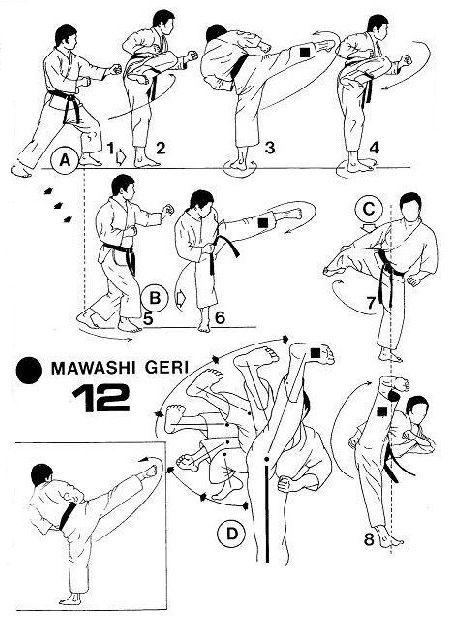 les 25 meilleures id es de la cat gorie kyokushin sur