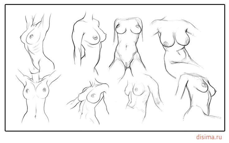 Как рисовать сиськи девушки