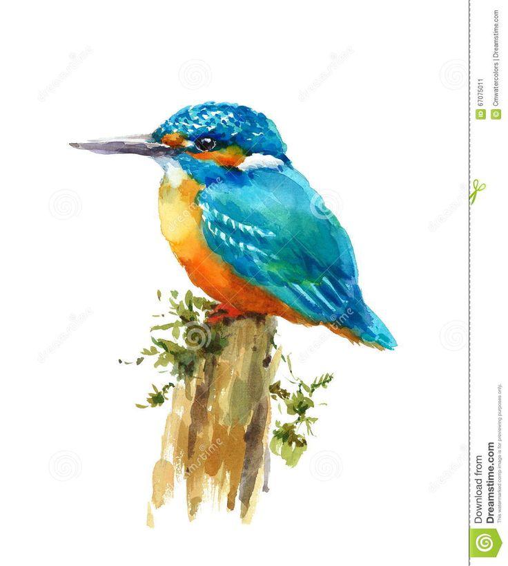 Amato Oltre 25 fantastiche idee su Illustrazione con un uccello su  WC39