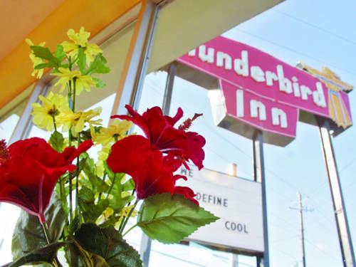 The Thunderbird Inn, Accommodation in Savannah, GA