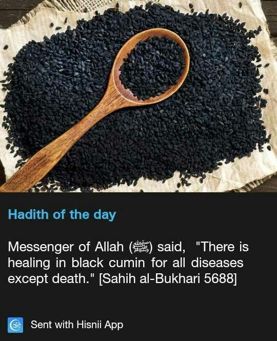 Hadith - black cumin