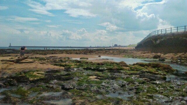 Rocky beach, Seaburn, Sunderland
