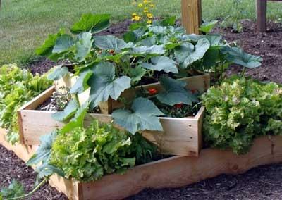 layered raised garden