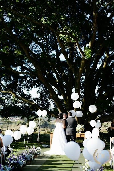 flor azul jardim secreto:1000 ideias sobre Casamento De Bosque no Pinterest