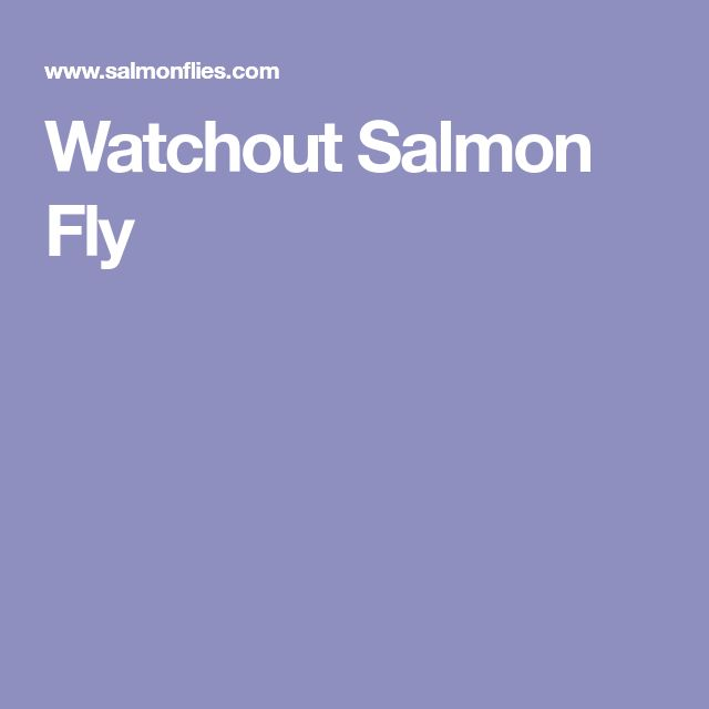 Watchout Salmon Fly