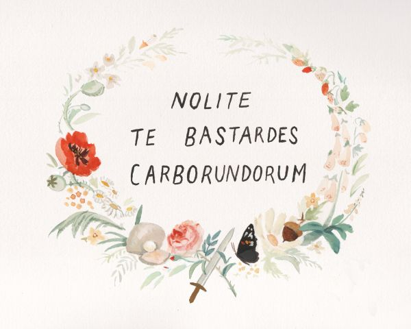 """""""Don't Let the Bastards Grind you Down"""" in latin/nonsense I wanted to make myself a sign with these words (a secret message of resistance in The Handmaid's Tale.) And I wanted to surround the words with harbingers of all the..."""