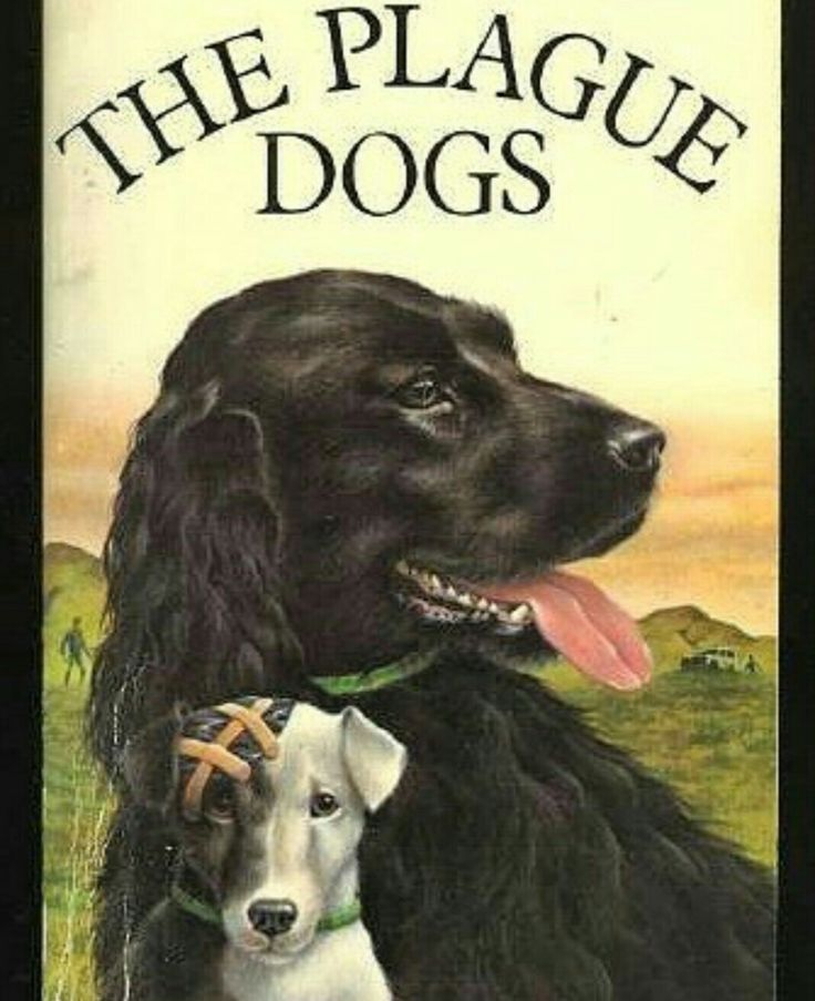 Watch The Plague Dogs Online Free