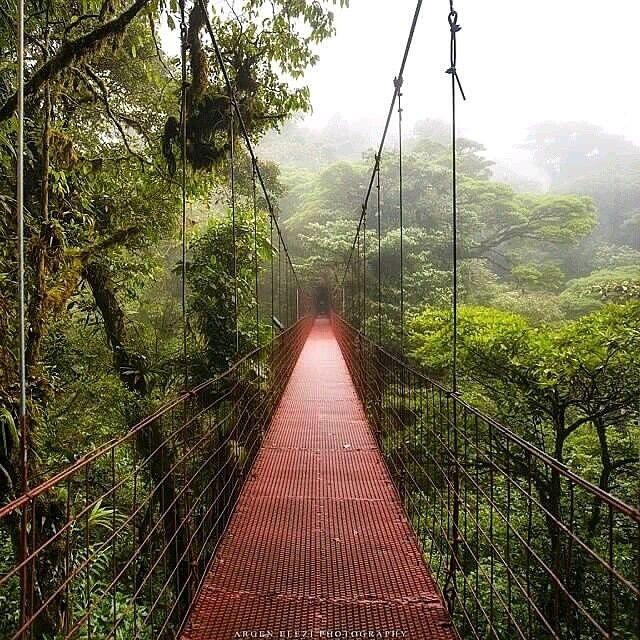 Подвесной мост, Коста Рика