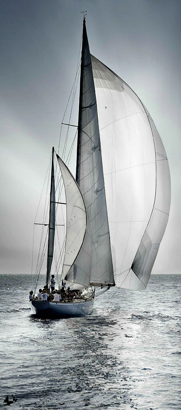 """""""Out of sight of land the sailor feels safe. It is the beach that worries him."""" -Charles G. Davis Image credit unknown #Photography #Sailing"""