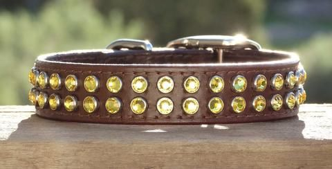 Ruff Puppies Collar: High quality leather collars and leads, comfortable for your dog and more beautiful over time.