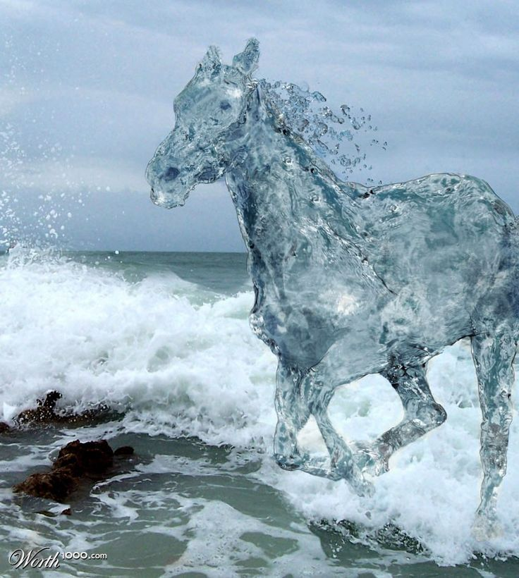 Photo of the sea with a horse created from water. Very life-like, the water horse looks so real if there were such thing. http://minivideocam.com/r/photoedit                                                                                                                                                     Mehr