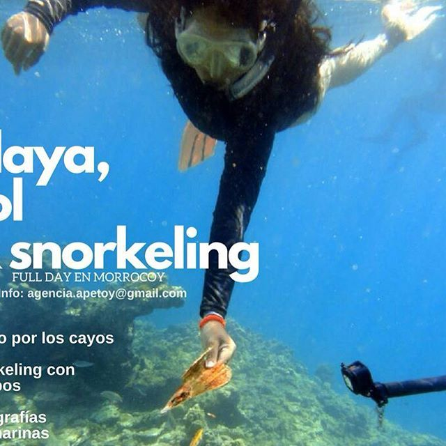 Nuestro full day incluye:  ºTraslado en lancha   ºPaseo por los cayos  ºEquipos completos de snorkeling  ºGuía e instrucción   ºAlmuerzo tipo lunch   ºCava con hidratación (No alcohólicas)  ºSet de fotografías submarinas 📷  +Info: agencia.apetoy@gmail.com    #playa #cayos #morrocoy #cayosombrero #playasdevenezuela #falcón #chichiriviche #snorkel #snorkeling #travel #beach #ecoviajeros ...
