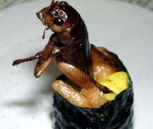 Одна из последних новинок японской кухни – суши с насекомыми, но по понятным причинам, этот деликатес не каждый хочет попробовать.