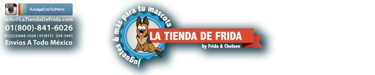 Pecheras para Perros, Correas, Collares & Más | La Tienda de Frida &. #JuegaConTuPerro