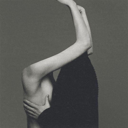 Isabel Reitemeyer   Collage