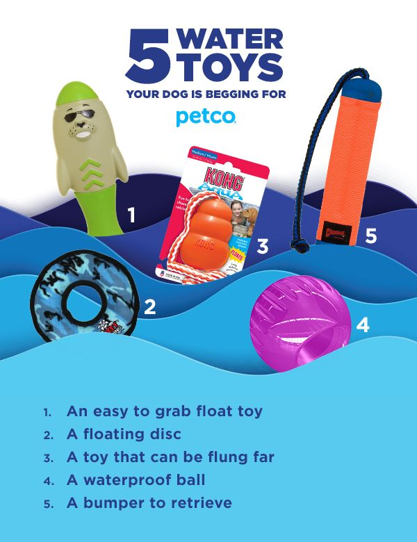 Keep Your Pup Safe And Having Fun While Splish Splashing This Summer With These Toys And Supplies Pet Toys Water Toys Dogs