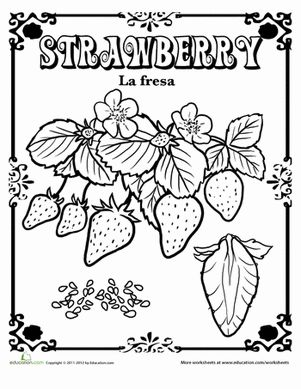 Fruits and Vegetables in Spanish Coloring Pages