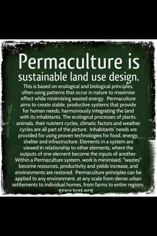 Permaculture summed up nicely. If you like this sort of thing, check out www.permies.com