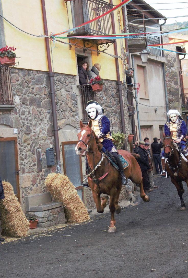 Horses from Santulussurgiu...  by SDP