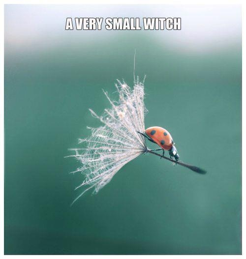 a very small witch^^ faaaabulous....