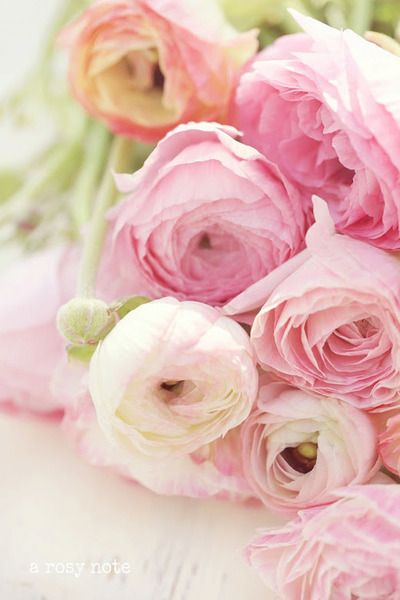 pink wedding flowers ~ Saved by They So Loved