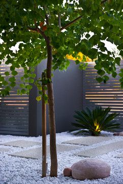 Courtyard Wall Design Ideas, Pictures, Remodel, and Decor - page 28