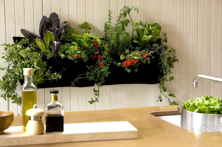 wooly pockets vertical gardening--would be awesome to fill with fresh herbs for cooking