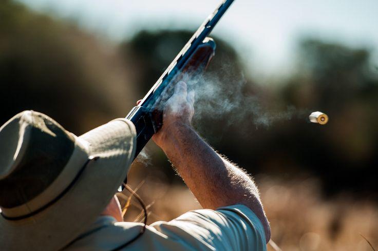 Dove Hunting at La Zenaida