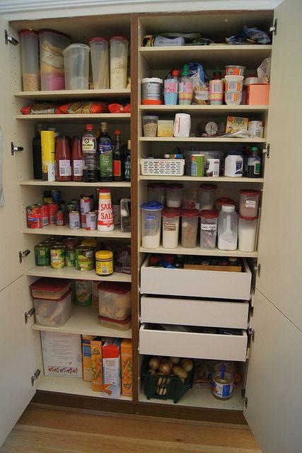 best 25+ pantry moths ideas on pinterest   moth repellent, get rid