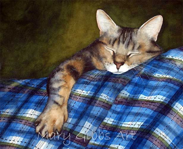 So Comfy  by Mary Gibbs