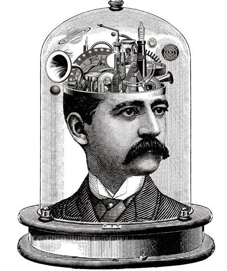 22 Best Brains Images On Pinterest