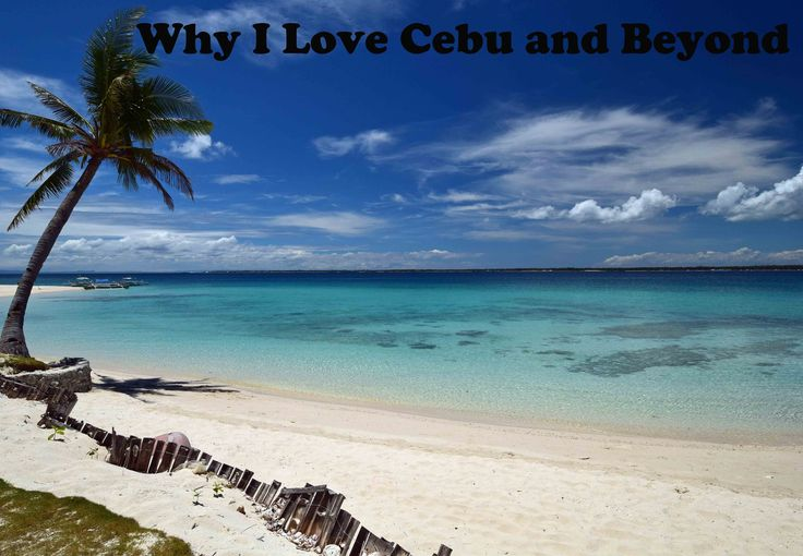 1000 Images About Cebu Where To Go In Cebu Things To Do In Cebu On Pinterest Whale Sharks